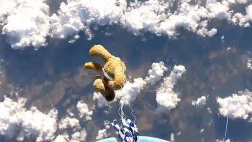 Un ours en peluche effectue le plus haut saut du m