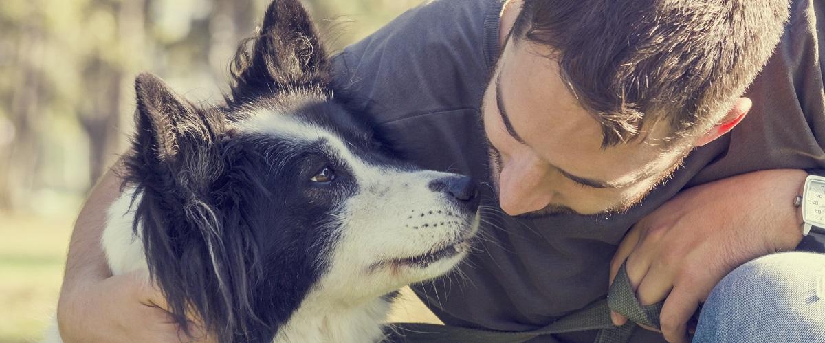 La relation de l'homme au chien